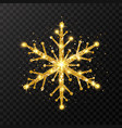 glitter golden snowflake on transparent background vector image vector image