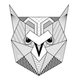 Hand drawn zentangle artistic Owl Bird for adult vector image