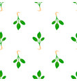 microgreens sprouting seeds of a plant seamless vector image vector image