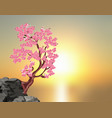 sakura blossoms a tree of pink cherry on a stone vector image vector image