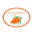 sea buckthorn label disign isolated o vector image