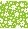 Seamless Pattern with Meadow Alpic Flowers vector image vector image
