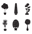 Silhouette icons of houseplants indoor and office vector image vector image