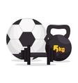 sport gym ball barbell kettlebell icons vector image