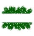 spruce branches pattern vector image vector image