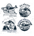 vintage walleye fishing emblems and labels vector image vector image