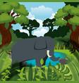 wild elephant in the jungle scene vector image
