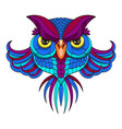 colored owl vector image vector image