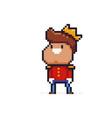 pixel art prince vector image vector image