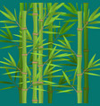Stalks of bamboo with green leaves flat theme in vector image