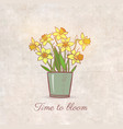 bouquet of yellow daffodiles on vintage background vector image vector image