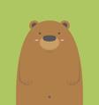 cute big brown bear vector image