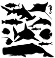 ocean fish silhouettes set vector image vector image