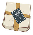 present box with decorative ribbon and best wishes vector image