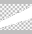 ripped long hole in sheet of transparent paper vector image vector image