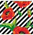 seamless with poppy flowers on black and vector image