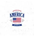 united states north america logo vintage vector image vector image